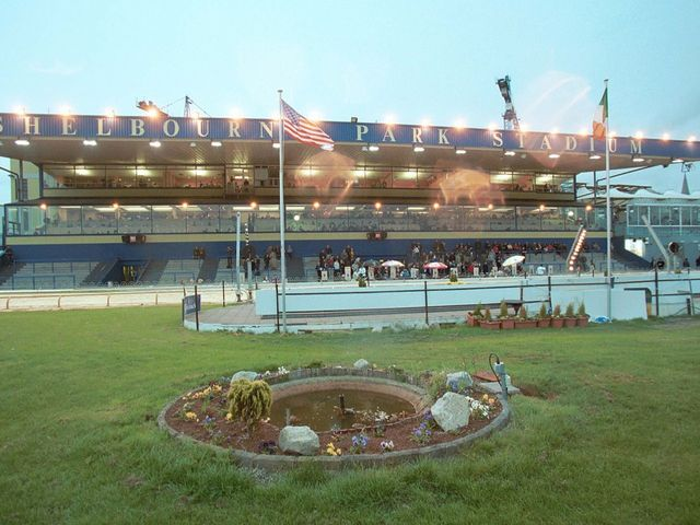Irish Greyhound Derby – Final Draw