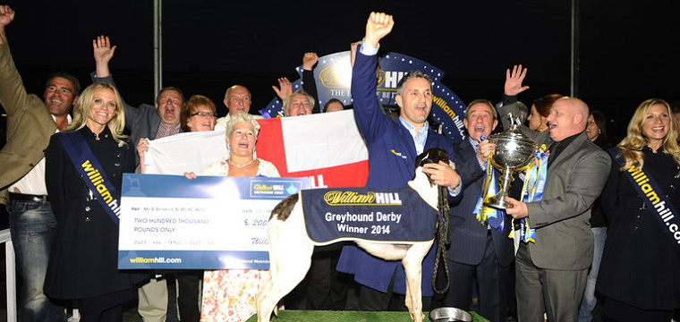 2014 Irish Greyhound Derby Final Preview