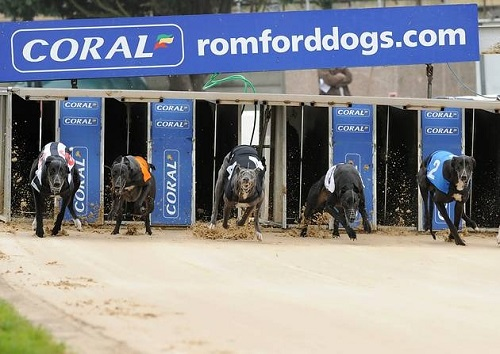 Romford stadium's multi million pound redevelopment gets underway